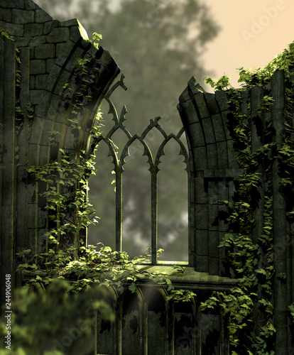 Gothic Old Ruins Covered with Ivy - 244906048