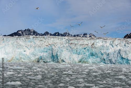 Foto op Plexiglas Arctica Glacier in Arctica