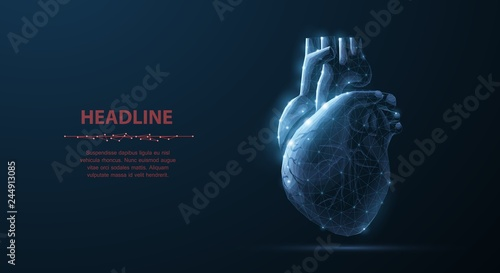 Fotografía  Heart. Abstract 3d vector human heart isolated on blue