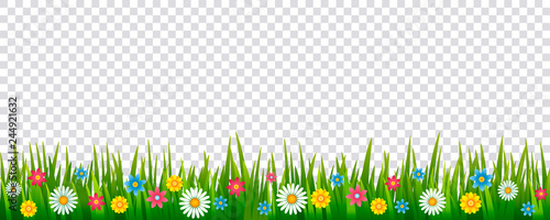 Bright realistic pattern of green grass and spring flowers for decorating Easter cards, banner. vector icon isolated