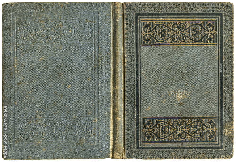 Fototapeta Old open book cover in grey canvas with embossed golden abstract and floral decorations (circa 1880), isolated on white, beautiful details