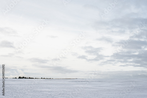 Poster Mer / Ocean Panoramic view of the empty snow-covered country field at sunset. Evening clouds. Norway