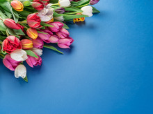 Colorful  Bouquet Of Tulips On Blue Background.