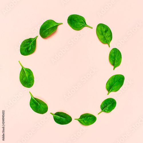 Fresh green spinach leaves in the shape of circle on pink background Flat lay top view copy space. Creative food concept. Ingredient for salad. Vegetable design. Healthy lifestyle.