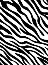 Zebra Print . Texture For Fash...