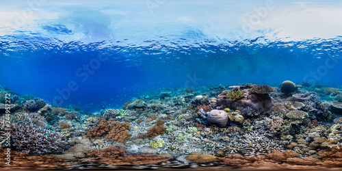 Healthy coral reef in Raja Ampat Indonesia panorama
