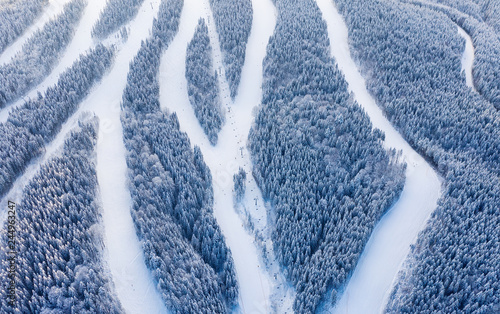 Fotomural Aerial view at the slope on ski resort