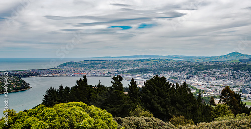 Photo  Overlook from Signal Hill of the city of Dunedin in Otago, South Island, New Zea