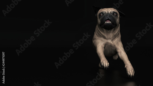 Pug Dog Running And Gallopping Frontal View 3d Illustraion