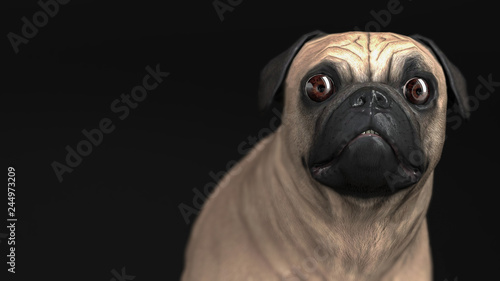Surprised pug dog with shocked eyes looking in curiosity 3d illustration
