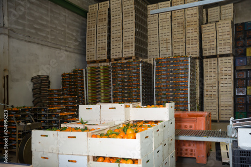 View of harvest ready for storage