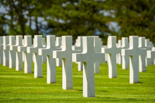 Soldier's Cemetery With A Row Of Crosses