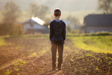 Back View Of Young Blond Child Boy Standing Alone On Field After Harvest On Late Summer Or Autumn Sunny Day On Distant Foggy Blurred Blue Panorama Of Small Houses Among Green Trees Background.