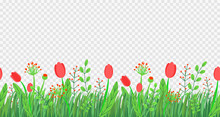 Spring Grass Seamless Border Vector With Flowers. Floral Wildflower Springtime Nature Plant Element Isolated On Transparent Background In Minimal Style