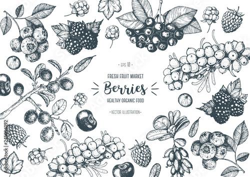 Photo Berries hand drawn, vector illustration frame