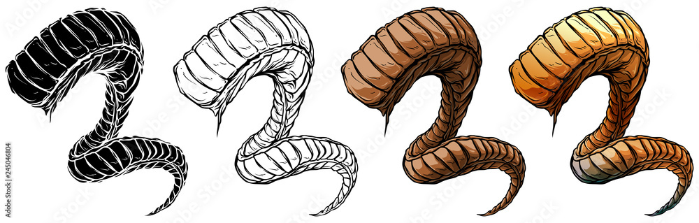 Fototapeta Cartoon graphic colorful detailed big sharp spiral animal horns or antlers. Hunting trophy. Isolated on white background. Vector icon set.