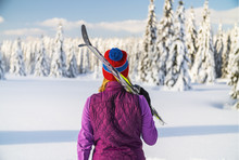 Back View Of Female Skier In A...
