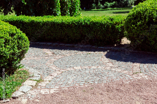 Poster Light pink a gravel path that turns into a stone tile path with boxwood fenced with hedges on a sunny day.