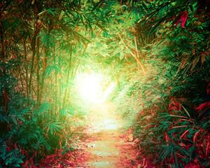 Panel Szklany Podświetlane Las Tunnel in fantasy tropical forest