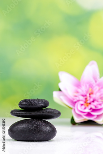 Photo Stands Water lilies Balanced zen stones with drops of water on a green bokeh background