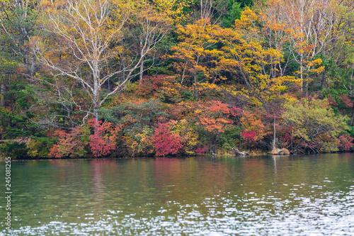 Deurstickers Asia land View of Yunoko lake in autumn season at Nikko national park, Nikko, Japan.