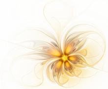 Abstract Fractal Golden Flower On White Background