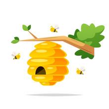 Honey Bee Nest Vector Isolated Illustration