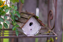 Wooden Bird House Standing On ...