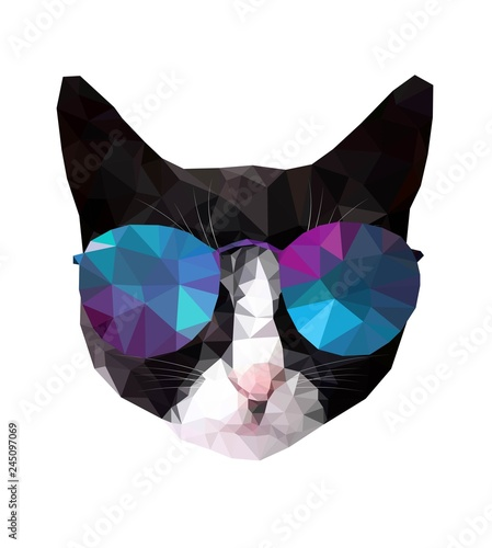 Obraz na płótnie Kot geometryczny