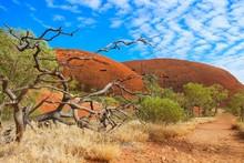 オーストラリアのエア...