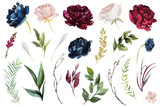 Fototapeta Kwiaty - Watercolour floral illustration set. DIY flower elements collection - perfect for flower bouquets, wreaths, arrangements, wedding invitations, anniversary, birthday, postcards, greetings, cards, logo.