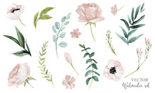 Vector Watercolour Floral Illu...