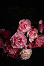 Bouquet Of Pink Carnations Flo...