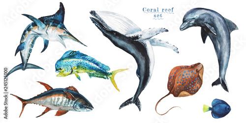 Fotografie, Obraz  Watercolor set of hand-drawn marine illustrations - mahi-mahi fish, marlin, dolphin, whale, tuna, wahoo, stingray