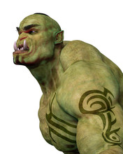 Green Ogre In White Background