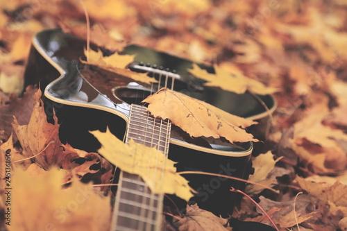 Guitar - 245136850