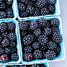 Plump Organic Black Berries In Quart Containers Ready For Sale At The Farmer's Market