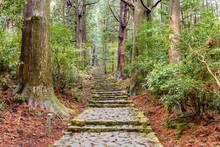 The Kumano Kodo Trail, A Sacred Trail In Nachi, Japan.