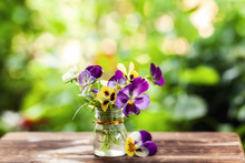 Bouquet Of Colorful Pansies On Green Nature Background. Beautiful And Delicate Flowers.