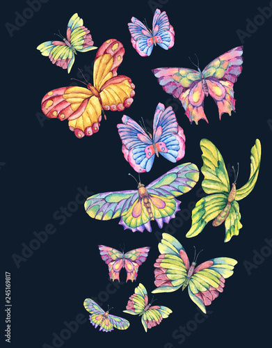 Tuinposter Watercolor vintage greeting card with colorful butterflies