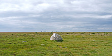 "Laesoe / Denmark: The Erratic Boulder ""Pigesten"" In The Salt Marshes At Kringelroen In The South Of The Island"