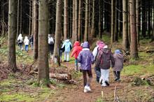Classes Vertes Excursion Education Enfants