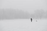 Woman walking dog in park in winter with heavy fog - 245217659
