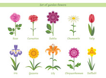 Set Of Named Garden Flowers. C...
