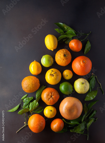 Overhead view of various citrus fruit with copy space
