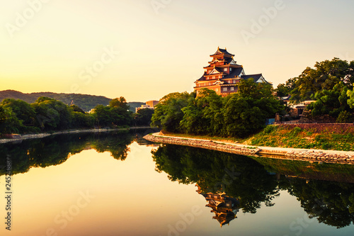 Fotografie, Tablou  Castle in Okayama, Japan in the morning with river and colorful yellow sky at su