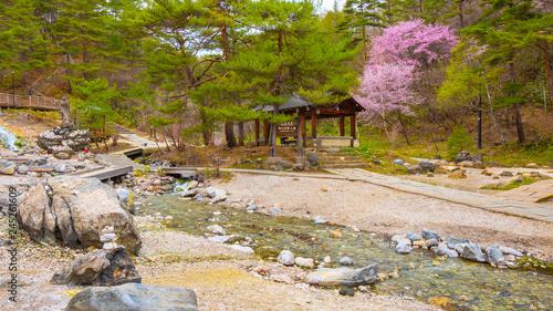 Deurstickers Asia land Sainokawara Park in Kusatsu onsen, Gunma, Japan