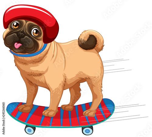 Staande foto Kids A dog plying skateboard