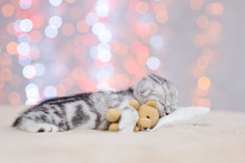 Baby Kitten Sleeping With Toy Bear On Pillow On Festive Background