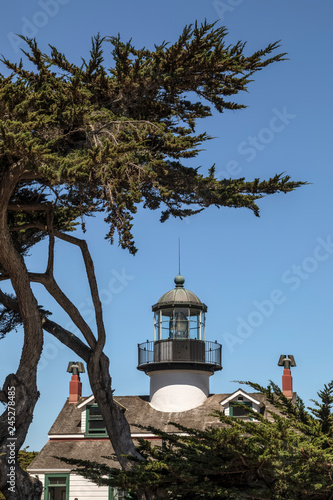 Valokuva  Point Pinos Lighthouse and Monterey Cypress - Pacific Grove, California
